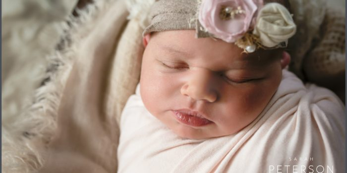 Newest Little Bundle / Newborn Session / Sarah Peterson Photography